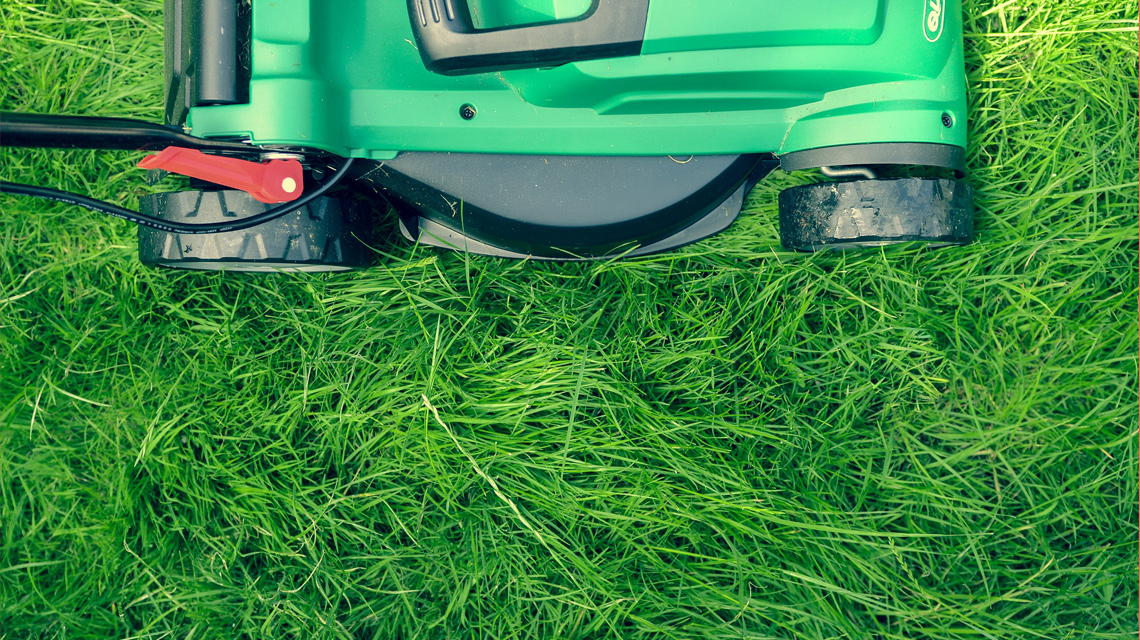 lawnmower cutting grass image